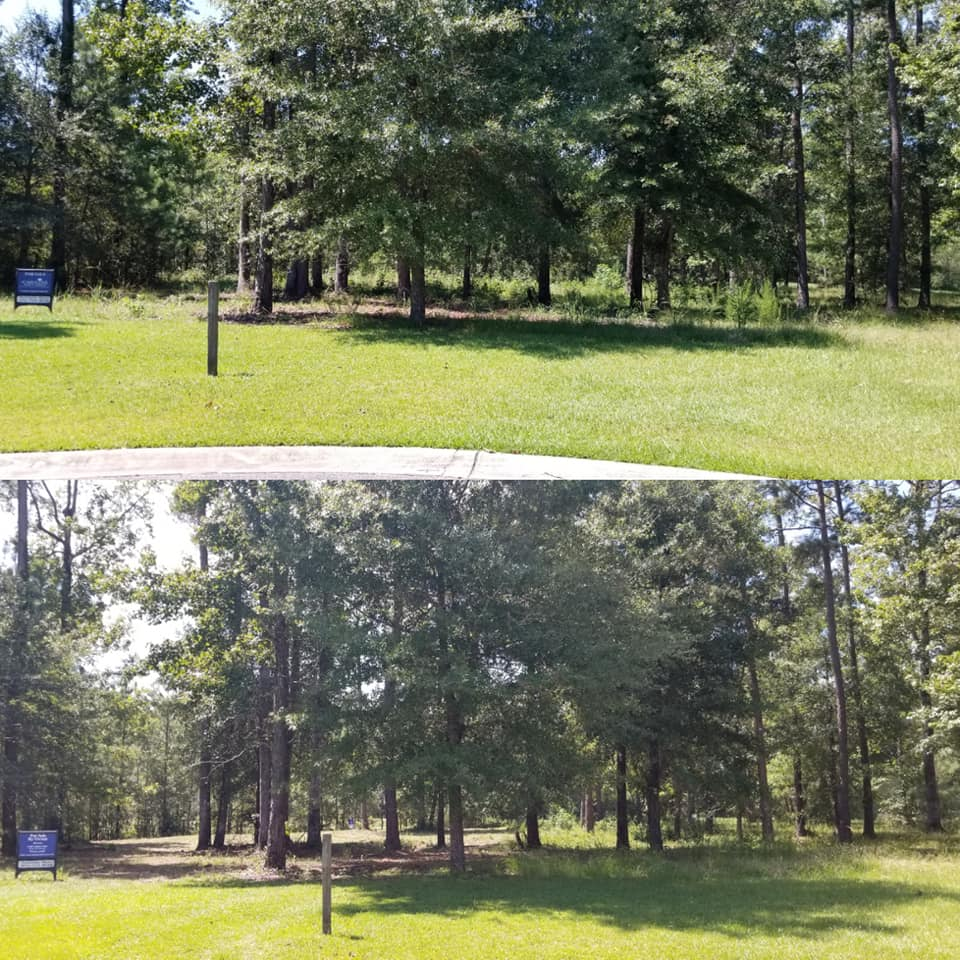 Brush cut lot in Conway, SC