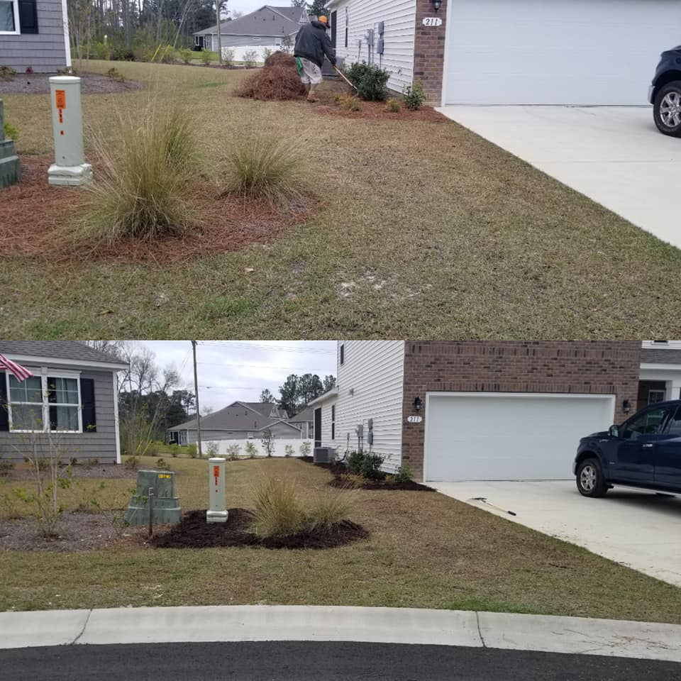 Removed Pine Straw and installed mulch in Little River, SC 29566