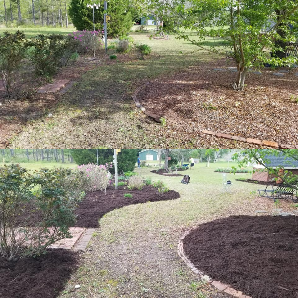 Top dressed and new mulch in the Loris, SC 29569