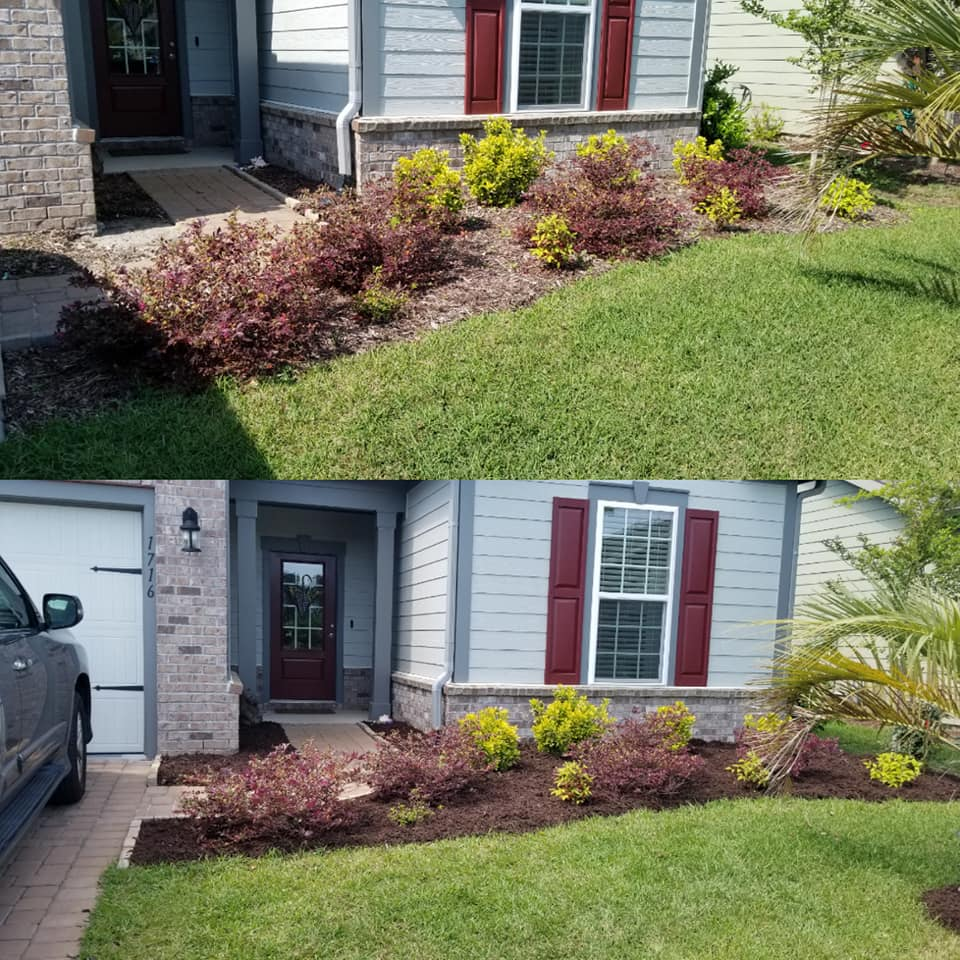 Top dressed mulch in Market Commons Myrtle Beach, SC 29577
