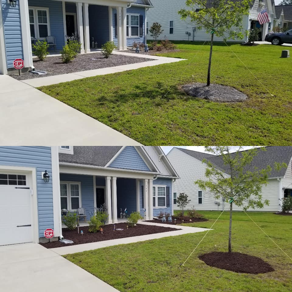 replace straw with mulch in Carolina Shores,NC