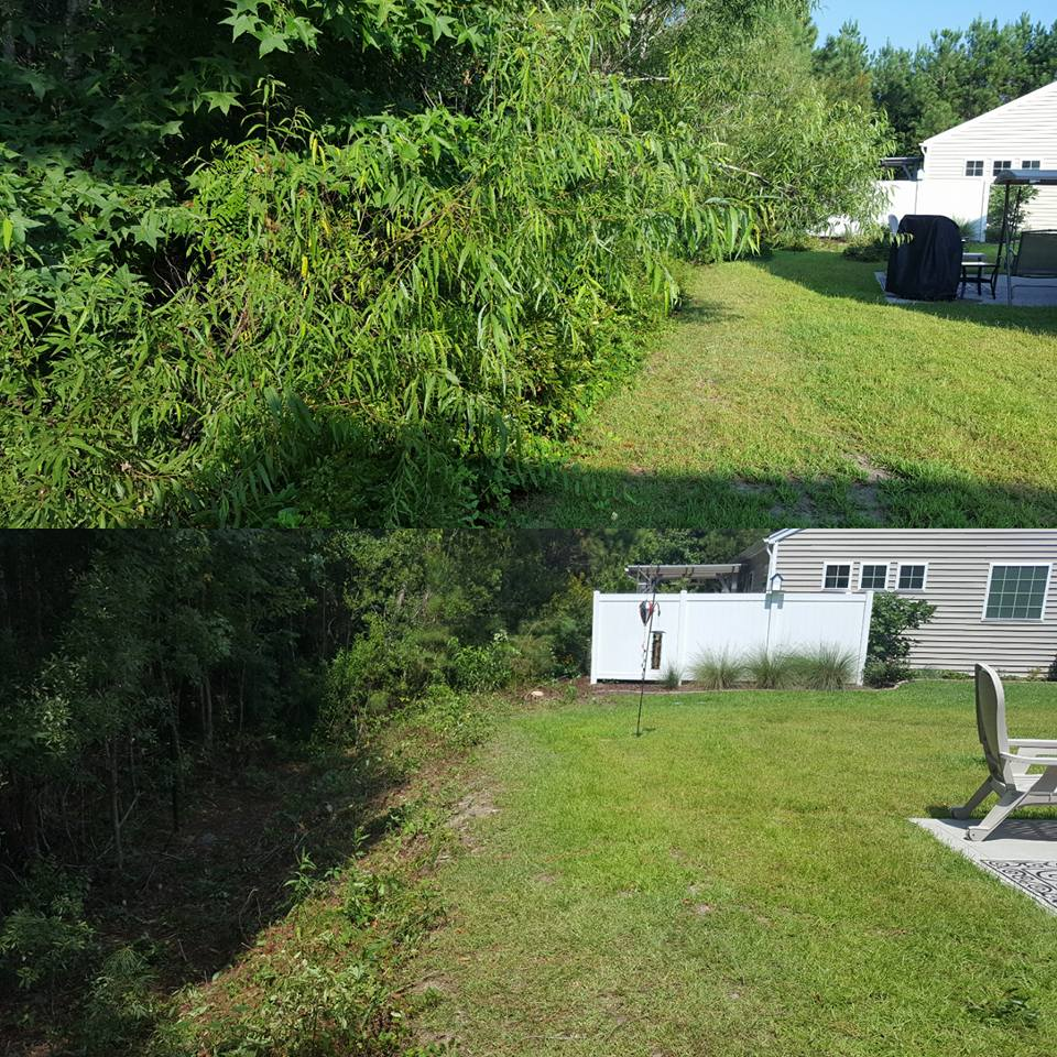 Trimmed hill line in Little River, SC 29566